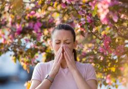 Tout savoir sur les allergies
