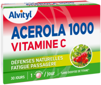 Govital Acerola 1000 à JOUE-LES-TOURS