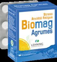 Lehning Biomag Comprimés à Croquer Agrumes B/90 à JOUE-LES-TOURS