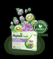 Phytoxil Transit Comprimés B/20 à JOUE-LES-TOURS