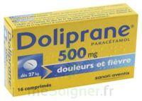 DOLIPRANE 500 mg Comprimés 2plq/8 (16) à JOUE-LES-TOURS