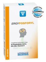 Ergyfosforyl Caps B/60 à JOUE-LES-TOURS