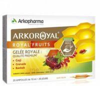 Arkoroyal Royal'Fruits Gelée royale Goji Grenade Baobab Solution buvable 20 Ampoules/10ml à JOUE-LES-TOURS