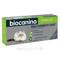 Biocanina Multivermyx Comprimés Vermifuge Chat B/2 à JOUE-LES-TOURS