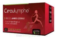 Santé Verte Circulymphe Triple Actions B/60 à JOUE-LES-TOURS