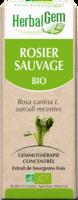 Herbalgem Rosier Sauvage Macerat Mere Concentre Bio 30 Ml à JOUE-LES-TOURS