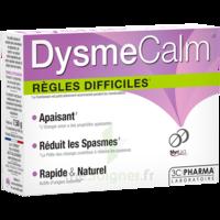 Dysmecalm Comprimés B/15 à JOUE-LES-TOURS