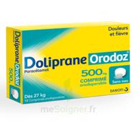 Dolipraneorodoz 500 Mg, Comprimé Orodispersible à JOUE-LES-TOURS