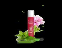 PURESSENTIEL ANTI-PIQUE Roller 11 huiles essentielles
