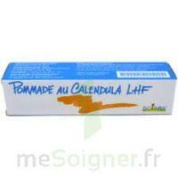 CALENDULA LHF POM T/20G à JOUE-LES-TOURS