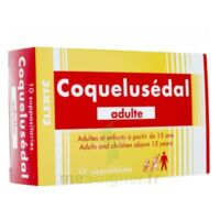 COQUELUSEDAL ADULTES, suppositoire à JOUE-LES-TOURS