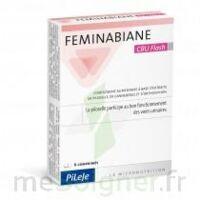Feminabiane CBU Flash Comprimés à JOUE-LES-TOURS
