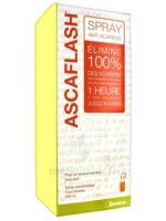 Ascaflash Spray anti-acariens 500ml à JOUE-LES-TOURS