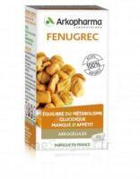 Arkogelules Fenugrec Gélules Fl/45 à JOUE-LES-TOURS
