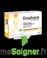 Ecophane Comprimés Beauté & éclat Cheveux Et Ongles 3*b/60 à JOUE-LES-TOURS