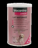 Biocanina Lait poudre maternisé B/400g à JOUE-LES-TOURS
