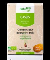 Herbalgem Gomme cassis bio B/24 à JOUE-LES-TOURS