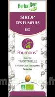 Herbalgem Sirop Bio Des Fumeurs 150ml à JOUE-LES-TOURS