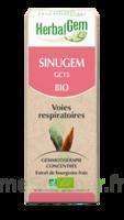 Herbalgem Sinugem Solution Buvable Bio Fl Cpte-gttes/30ml à JOUE-LES-TOURS
