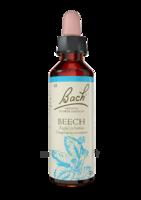 Fleurs de Bach® Original Beech - 20 ml à JOUE-LES-TOURS