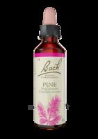 Fleurs de Bach® Original Pine - 20 ml à JOUE-LES-TOURS