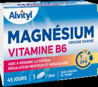 Govital Magnésium Vitamine B6 Comprimés B/45 à JOUE-LES-TOURS