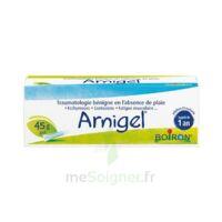 Boiron Arnigel Gel T(alumino-plastique)/45g à JOUE-LES-TOURS