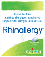 Boiron Rhinallergy Comprimés B/40 à JOUE-LES-TOURS