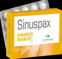 Lehning Sinuspax Comprimés à Croquer 3plq/20 à JOUE-LES-TOURS