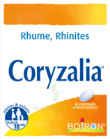 Boiron Coryzalia Comprimés orodispersibles à JOUE-LES-TOURS