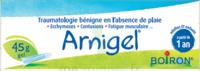 Boiron Arnigel Gel T/45g à JOUE-LES-TOURS